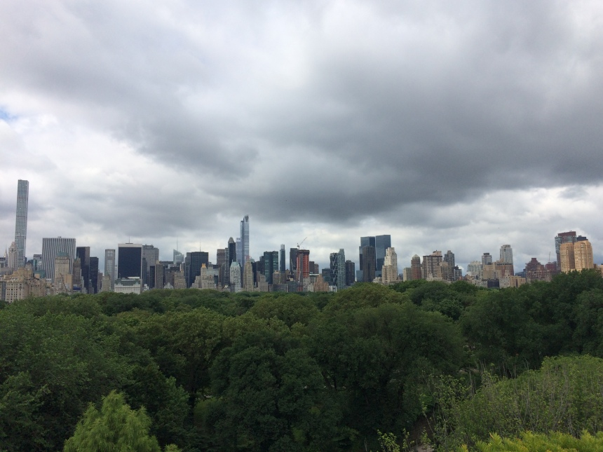 View of Central Park from MET