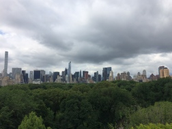 View from MET