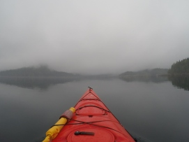 Kayaking with Orca Dreams