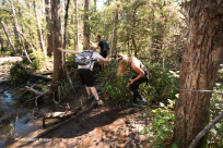 Hiking to the crashed plane