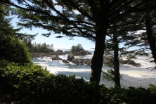 Wild Pacific Trail Ucluelet