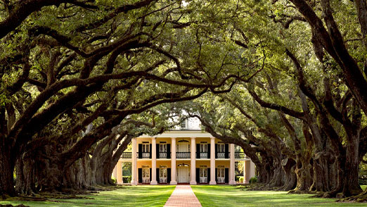 Plantations, New Orleans