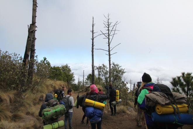 Hiking Acatenango