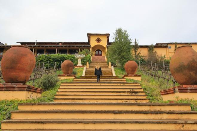 Winery Santa Cruz, Chile