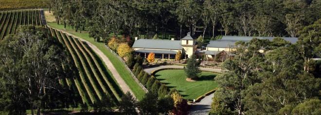 Centennial Vineyards
